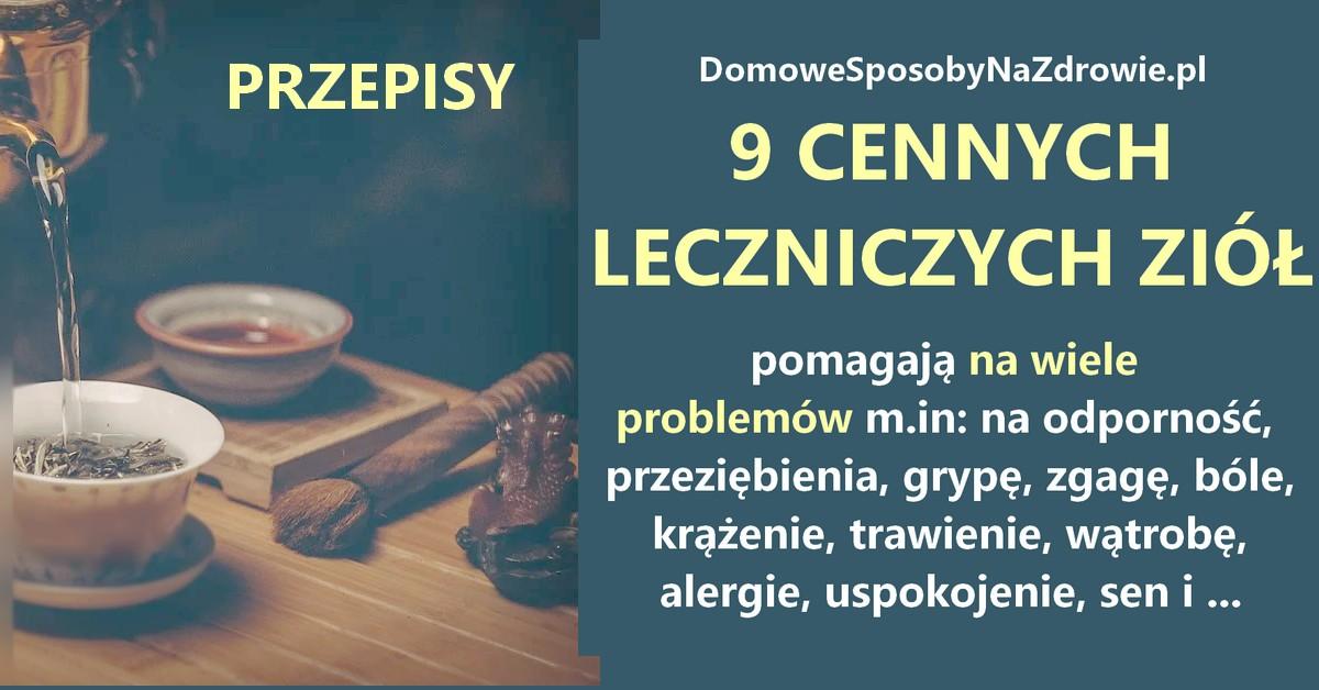 DomoweSposobyNaZdrowie.pl-9-ziol-herbatek-leczniczych-przepisy