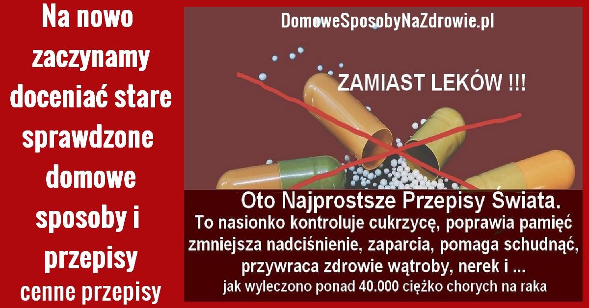 DomoweSposobyNaZdrowie.pl-przepisy-nasionko