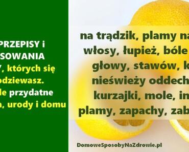 DomoweSposobyNaZdrowie.pl-cytryny-przepisy-zastosowania-33