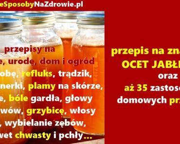 DomoweSposobyNaZdrowie.pl-ocet-jablkowy-przepisy-zastosowania-35
