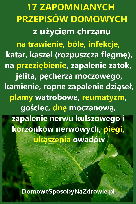 DomoweSposobyNaZdrowie.pl-chrzan-przepisy