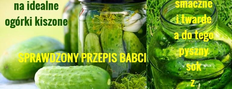 DomoweSposobyNaZdrowie.pl-ogórki-kiszone-przepis